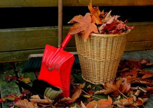 Getting Your House Ready for Fall