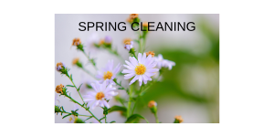 Spring Household Tasks Ideal for Concierge Providers